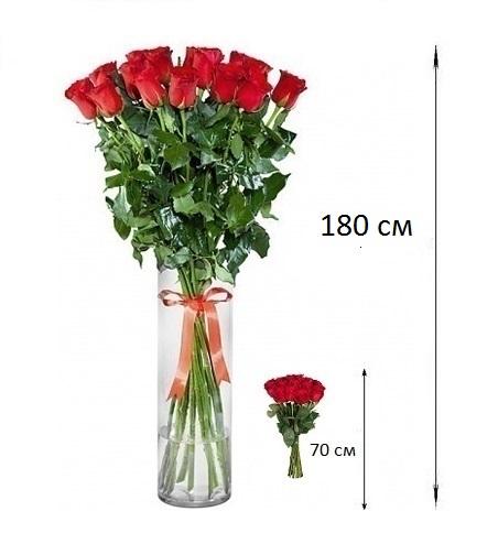 Купить большие розы в спб дудинка доставка цветов