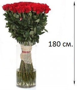 Розы длинные купить спб