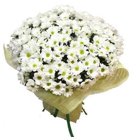 букет из хризантем белых фото