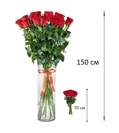 Купить розы в москве 150 см