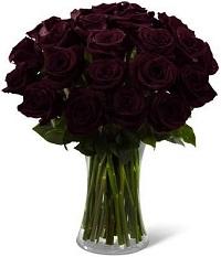 Блэк мейджик розы купить в москве подарок любимому мужчине в алматы