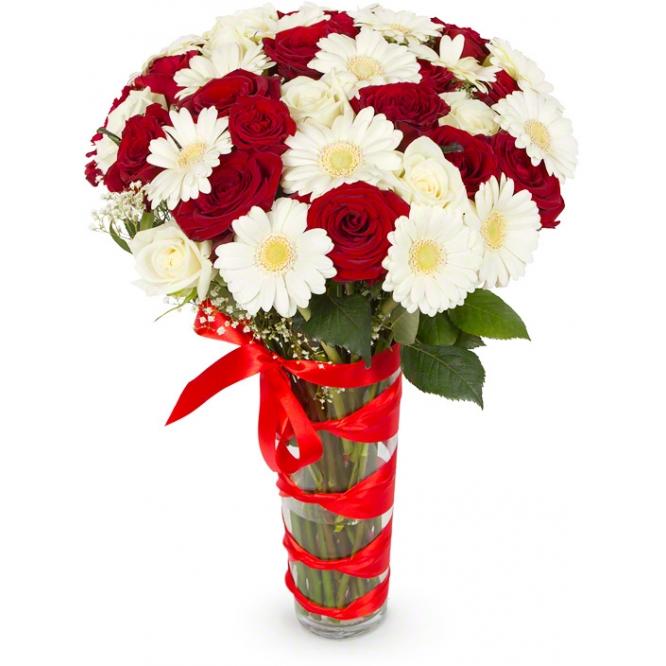 Белые розы красные