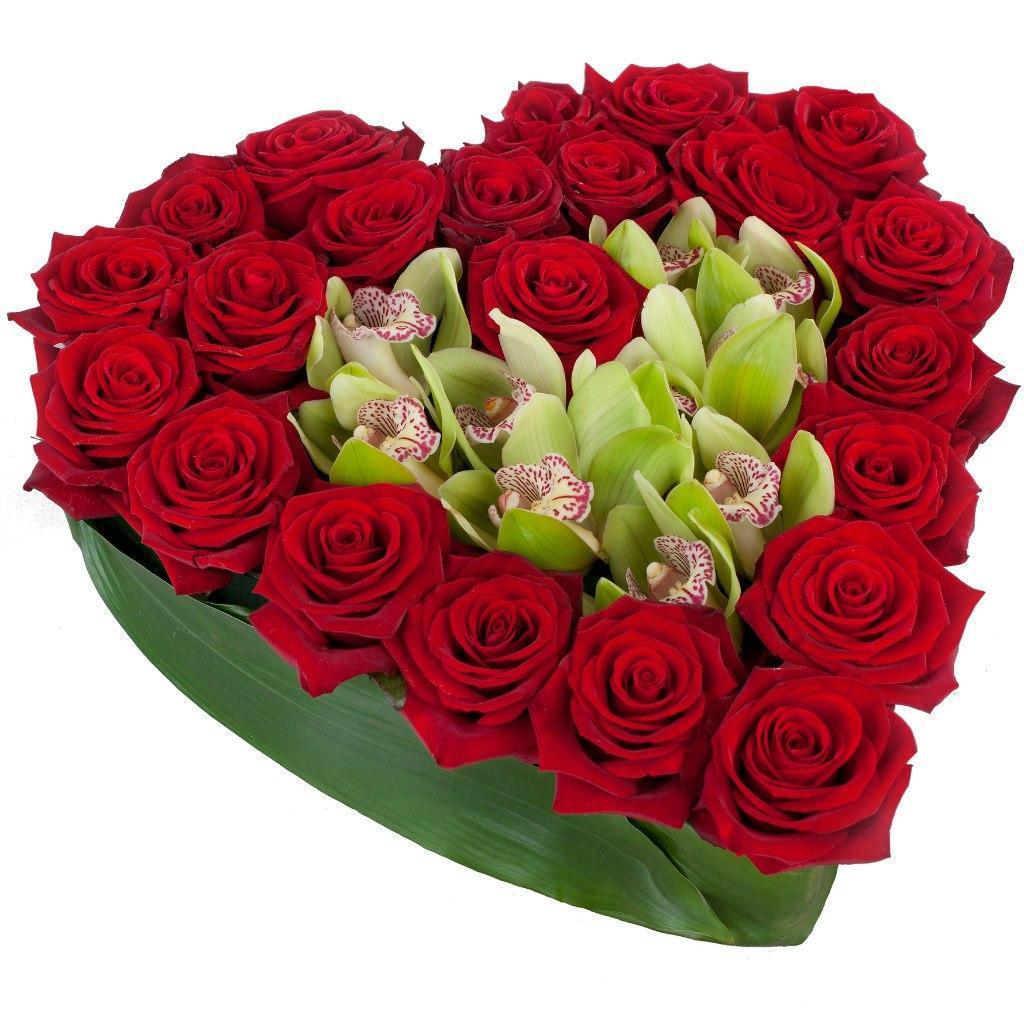 Цветы картинки красивые букеты для любимой