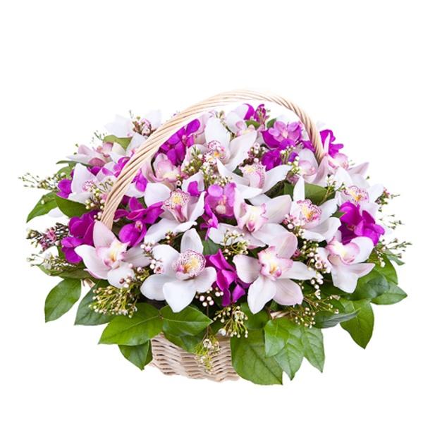zakaz-buketi-v-korzine-orhidei-na-yubiley-kupit-tsveti