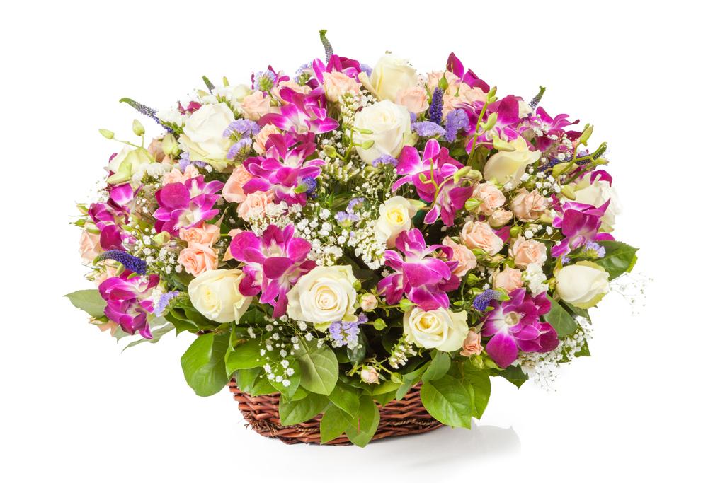 Картинки по запросу розы белые