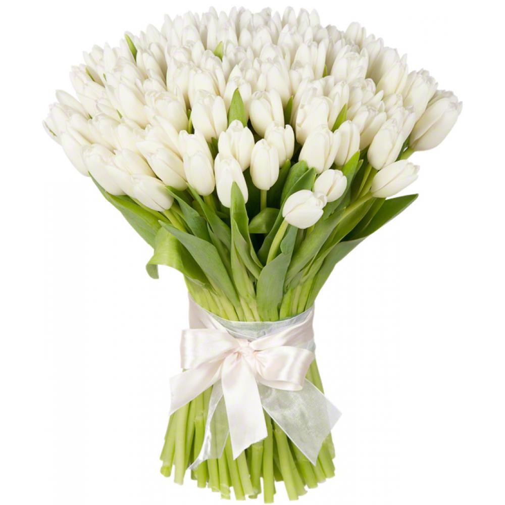 Купить тюльпаны белые доставка цветов зеленокумску