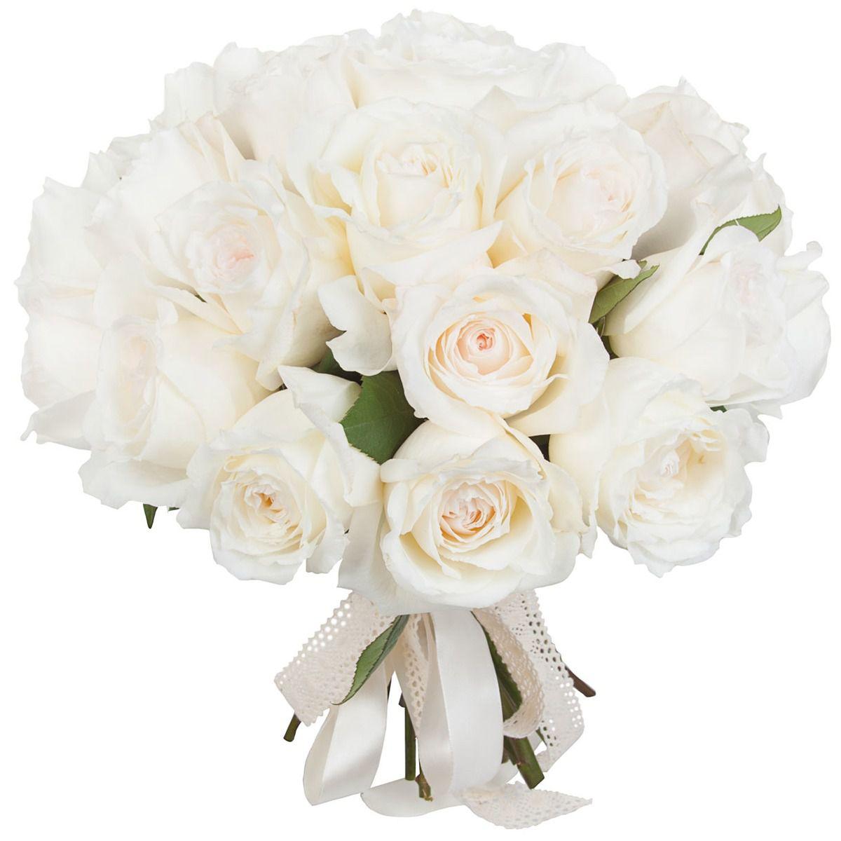 Пионовидные розы белые фото