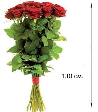 Картинки большие розы