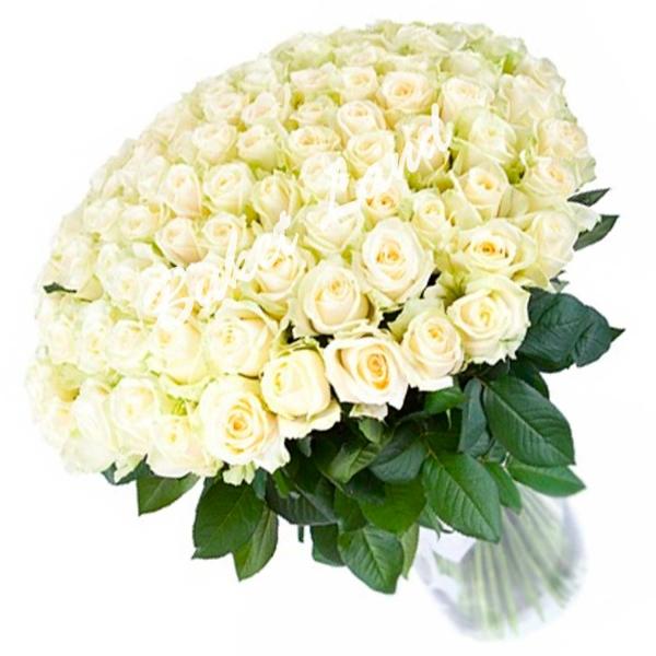 Открытка букет белые розы и