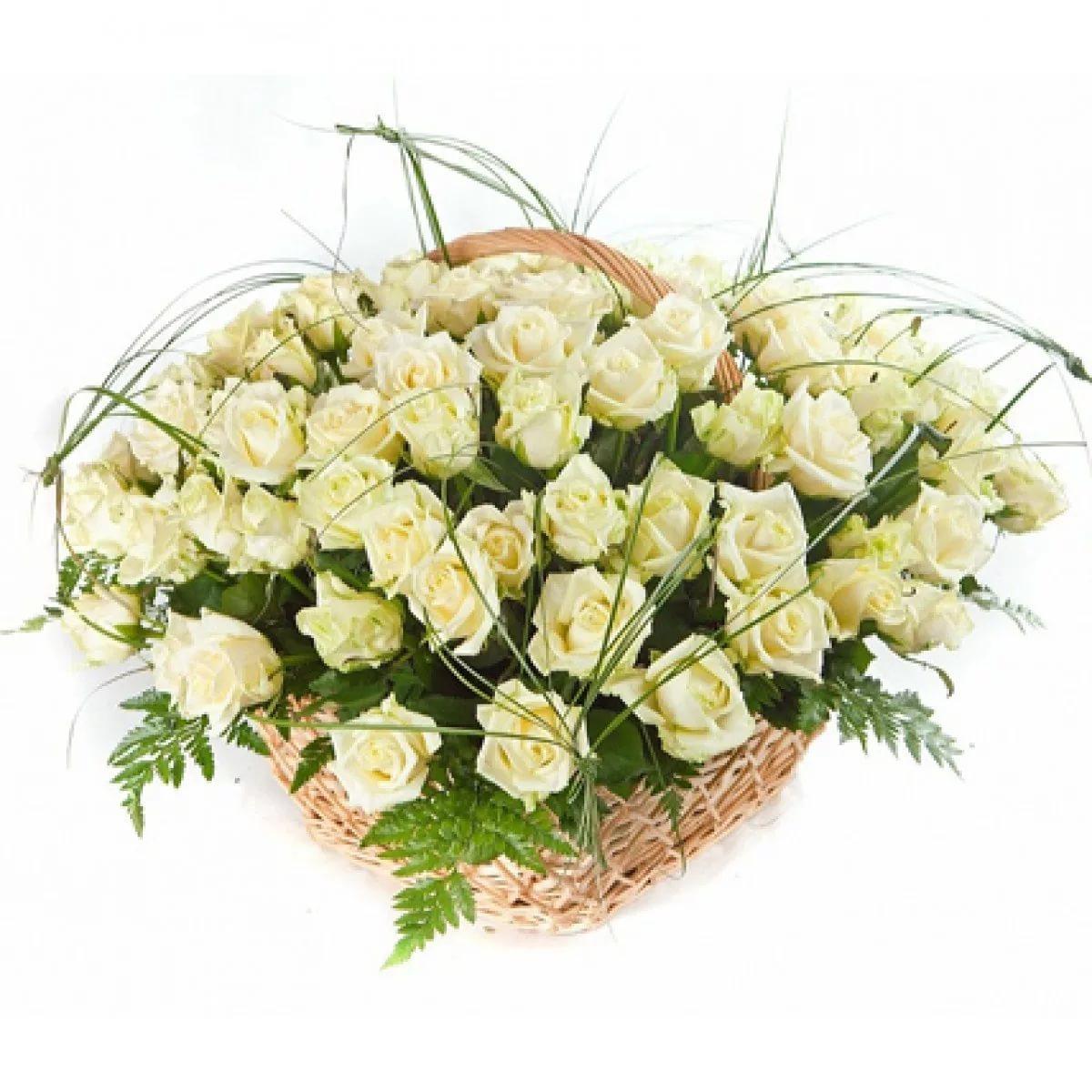 Белые розы в подарок это 597