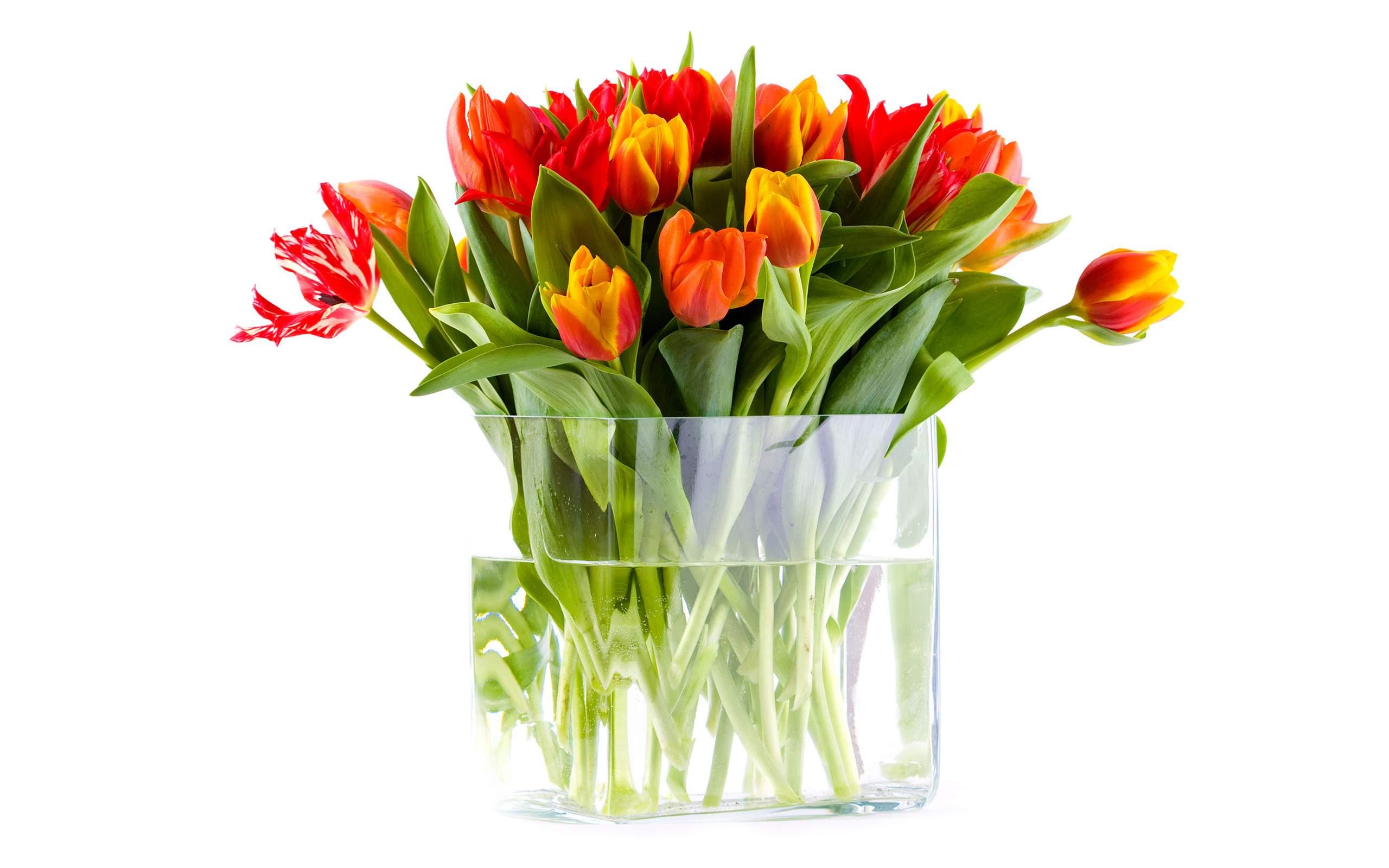 тюльпаны ваза море  № 1012884 загрузить